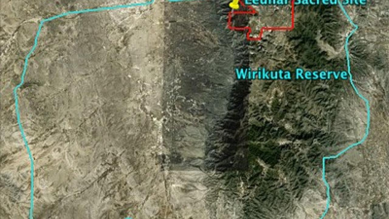 Reserva de Wirikuta