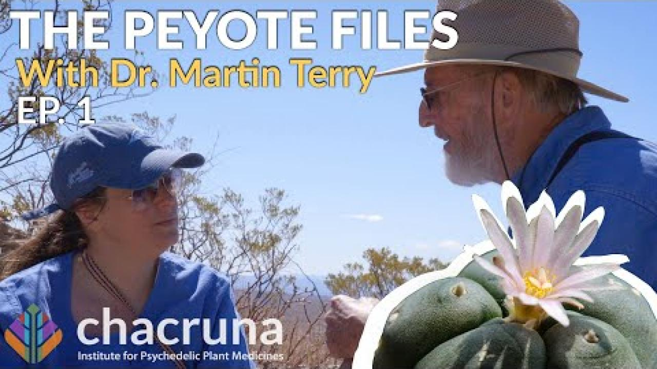 The Peyote Files (episode 1)