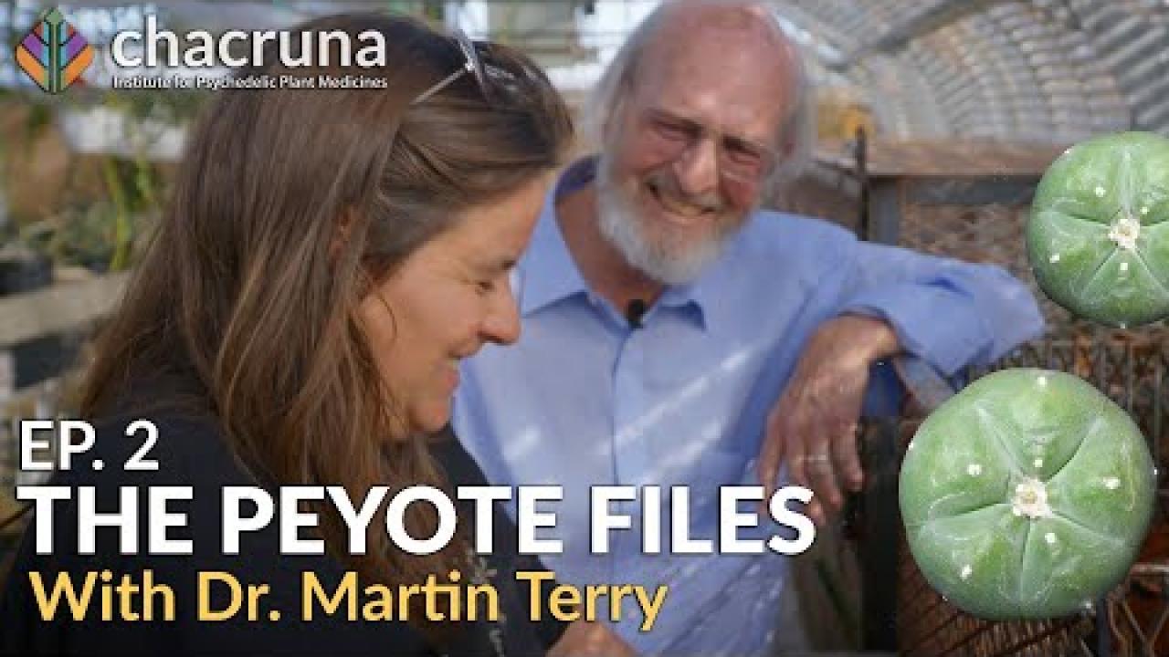 The Peyote Files (episode 2: Peyote Threats)