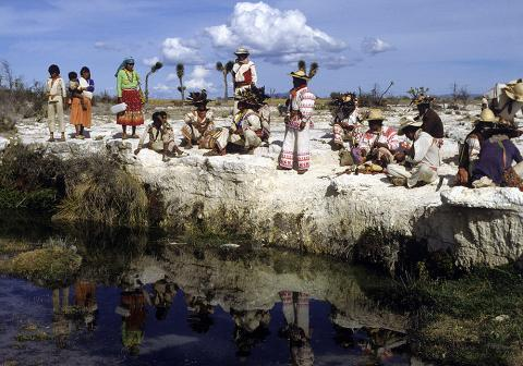 The Sacred Spring of Tuimayau in Wirikuta  - Photograph ©Juan Negrín 1990-2018
